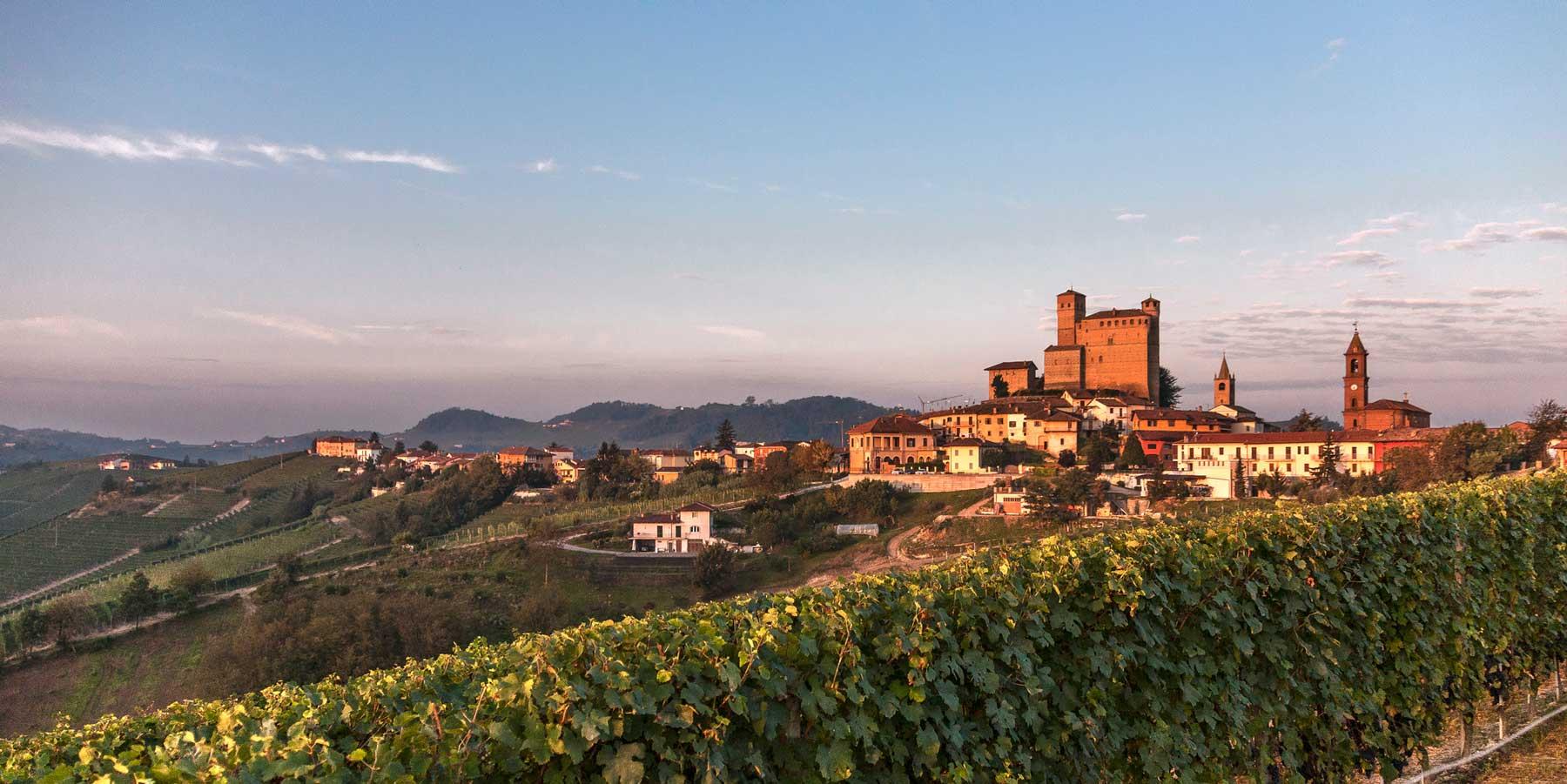 Langhe con castello di Grinzane Cavour sullo sfondo