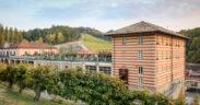 Enoturismo in Piemonte