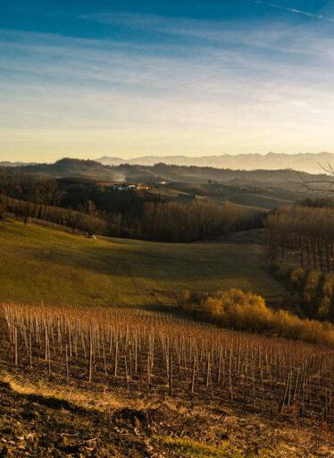 Langhe-in-Piemonte (2)