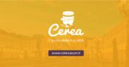Cerea è l'ecommerce e delivery di prossimità