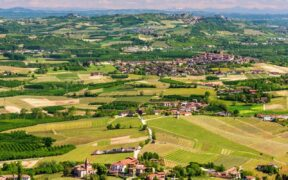 DOP economy in Piemonte