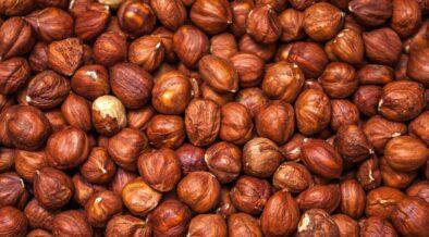 Boom delle nocciole: Italia secondo produttore dopo Turchia