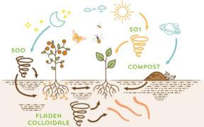 Biodinamica come il biologico